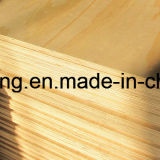 Alto grado Bintangor madera contrachapada para Muebles y Embalaje