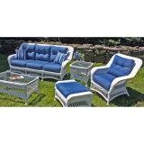 El sofá de los muebles del jardín del metal fijó en venta