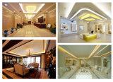 LEDの適用範囲が広いストリップは装飾的な照明のためのキットをつける