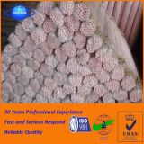 Tubo di ceramica dell'allumina del tubo 99 di protezione della termocoppia dalla Cina