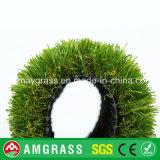 Erba dell'acquario ed erba artificiale per la decorazione