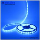 Impermeável 12V 24V LED Flexible Strip Light