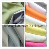 Prodotto intessuto saia normale del popeline della camicia di TC