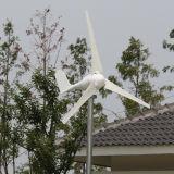 Branco pequeno do gerador 12V /24V 100W do moinho de vento (YC-100S)