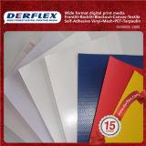 줄무늬 색깔 PVC 방수포 200X300d, 18X12, 340g