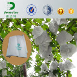Bolsas de papel de la fábrica de la muestra libre directo para la fruta fresca y el tomate