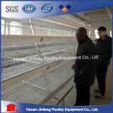 Sistema automático da gaiola do equipamento das aves domésticas da galinha para a franga da grelha da camada