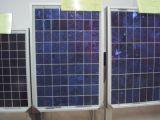 250W多セル太陽モジュールPVの太陽電池パネル