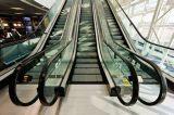 Sichere Gebäude-Passagier-Rolltreppe für Verkauf