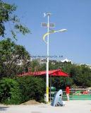 Turbine-Aufsatz-Hersteller des Wind-5kw-50kw mit bester Qualität