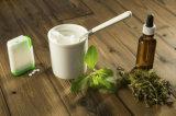 China-Lieferanten-natürlicher Stofforganischer Stevia