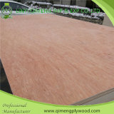 Poplar Coreの安いPrice 15mm Uty Grade Commercial Plywood