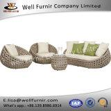 Furnir健康なWf-17048の枝編み細工品4部分の深い座席のグループ