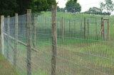 Загородки для управления оленей