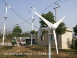 moulin horizontal de turbine de vent 600W approprié à la région inférieure de vent