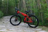 La Cina poco costosa che piega la bicicletta pieghevole della bici 48V di E elettrica