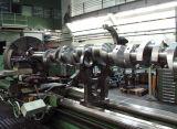 Cigüeñales para Yanmar Diesel Engine