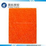 Feuille 100% gravée en relief par polycarbonate de Lexan avec l'homologation de GV