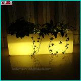 Entrada Salão do restaurante do hotel fora dentro dos potenciômetros de flor com iluminação