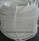 Filamento balistico del filato della fibra della fibra UHMWPE di UHMWPE