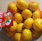 Chinês fresco no mandarino do bebê da boa qualidade