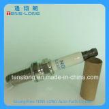ランドローバーDiscoveryのための自動Parts Best Quality Iridium Spark Plug Lr032080/8W93-12405-ABB/Aj812146/8W12405AAA/C2p23089/Lr019484