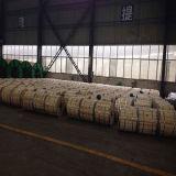 cabo isolado XLPE de alumínio da corrente eléctrica do PVC do condutor 1kv