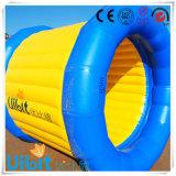 Rolo Columnar inflável do projeto da água dos Cocos para o Aqua LG8068