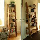 Estante del acero inoxidable de los muebles de la biblioteca para los niños