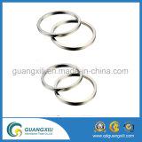 Kundenspezifischer permanenter Ring NdFeB/Neodym-Magnet mit RoHS