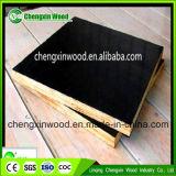 La película negra hizo frente a la madera contrachapada con base completa del álamo