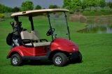 2014最新のデザイン高品質のMniの電気ゴルフ手段のゴルフカート