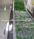 セリウムの品質の自動泡フルーツの洗濯機の野菜の洗濯機
