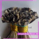 インドの毛のケラチンのイタリアの毛のケラチン