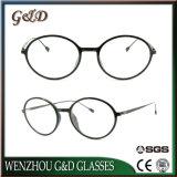 Het nieuwe Optische Frame van het Oogglas van Ultem van het Ontwerp Plastic met Slank Roestvrij staal 7308