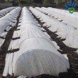 Prodotto non intessuto bianco di Spunbond per la copertura