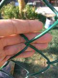 La rete metallica rivestita di figura del diamante del PVC mette in mostra la rete fissa di collegamento Chain