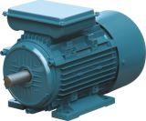 Мотор одиночной фазы старта & бега конденсатора электрический (рамка литого алюминия)