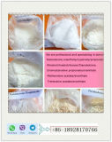 Testosterona esteroide sin procesar Enanthate del polvo con la pureza elevada, muestra libre disponible