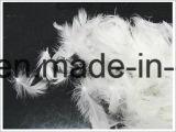 위안자 (IDFL, USA-2000, EN12934, JIS, GB/T17685-2016)를 위한 최고 세척된 백색 오리 기털 2-4cm