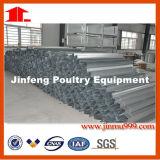 Sistema da gaiola da galinha da bateria da grelha da camada do frame de H feito em China com boa qualidade
