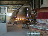 GMP завод Высокая чистота фармацевтического качества Оксид цинка