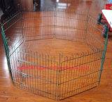 Maschendraht-Huhn-Hundehütte