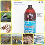 Aquaculture Feed Additive를 위한 해초 Microbial Agent
