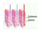 3 colores Omnilux Revive máquina de belleza / tratamiento del acné para la piel sensible