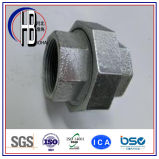 Unión M/M cónico 150lbs, 250lbs, 500lbs del acero inoxidable del precio de fábrica