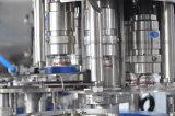 자동적인 애완 동물 병 야자열매 또는 땅콩 우유 가공 기계 (1000BPH-18000BPH)