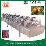 洗浄のトウモロコシおよびJujubeのドライヤーの機械および食糧乾燥機械