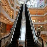 escalator de centre commercial de passager d'opération de 800mm solides solubles