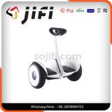 10 인치 2 바퀴 전기 각자 균형을 잡는 스쿠터 망설임 널 외바퀴 자전거